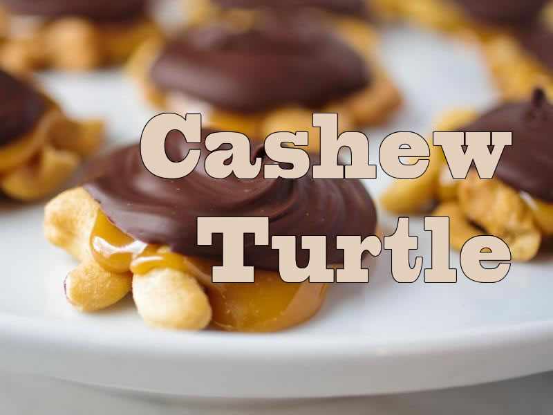 Cashew-Turtle
