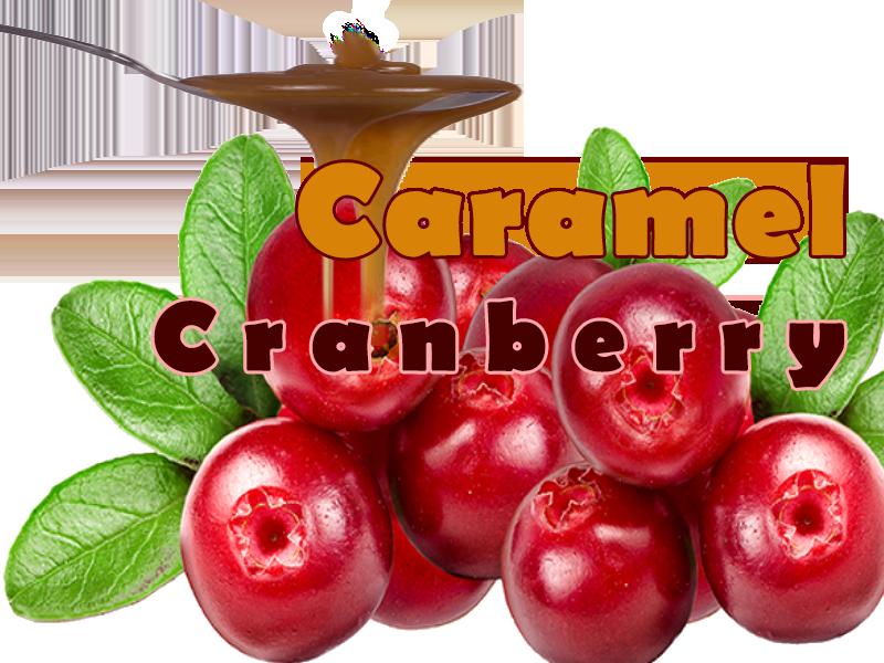Caramel Cranberry Popcorn - That Popcorn Shack