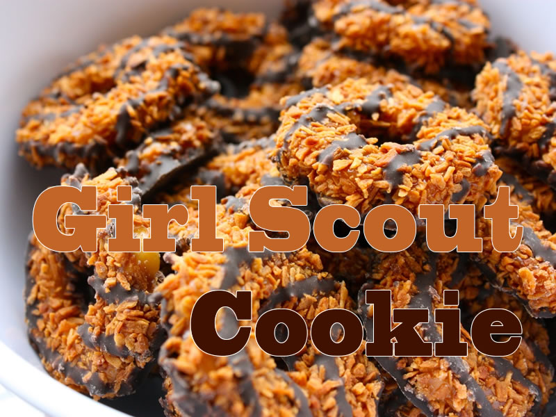 girl-scout-cookie